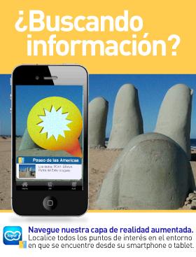 Imagen de Puntaweb Layer Información