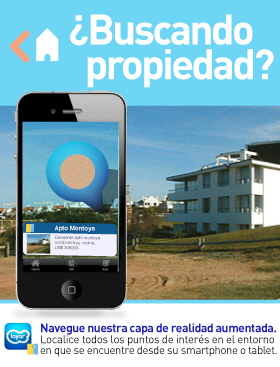 Imagen de Puntaweb Layer Propiedades