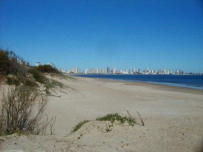 Vista de la península desde la Playa Mansa - Punta del Este