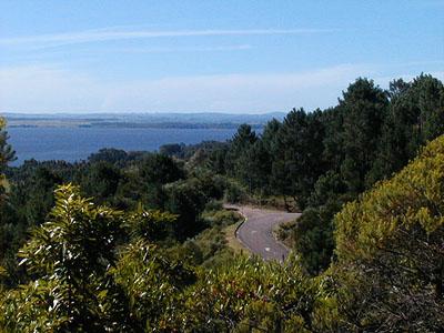Vista de la Laguna del Sauce desde Las Cumbres - Punta Ballena