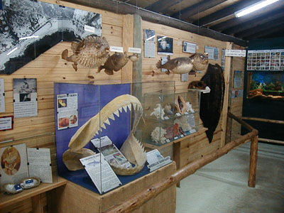 Museo del Mar en La Barra - La Barra