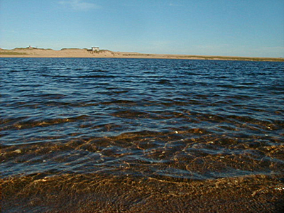 Laguna Garzón - José Ignacio