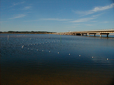 Laguna José Ignacio - José Ignacio
