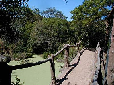 Parque Pan de Azúcar - Pan de Azúcar