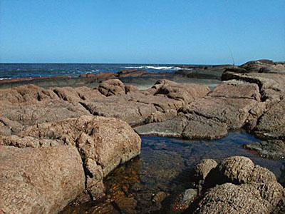 Punta del Chileno - Punta Ballena