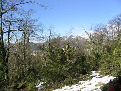 Subida al Cerro Otto - Bariloche