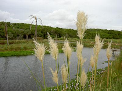 Espejo de agua en Sierras de Garzón - Garzón