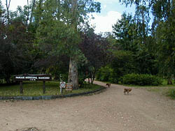 Parque Mancebo