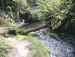 Paseo de la Aguada