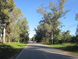 Camino Egusquiza