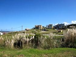 Punta Piedras