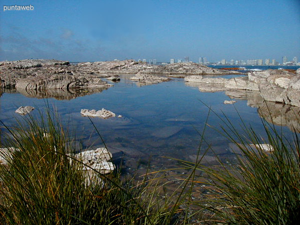 Vista hacia Punta del Este desde la isla Gorriti.