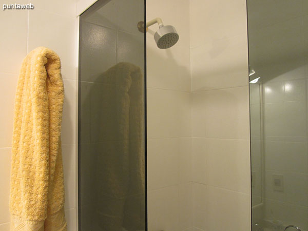 Detail of the shower and screen the first bath.