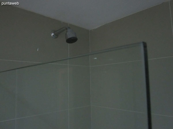 Health sector and shower with bath and glass screen in the bathroom of the suite.