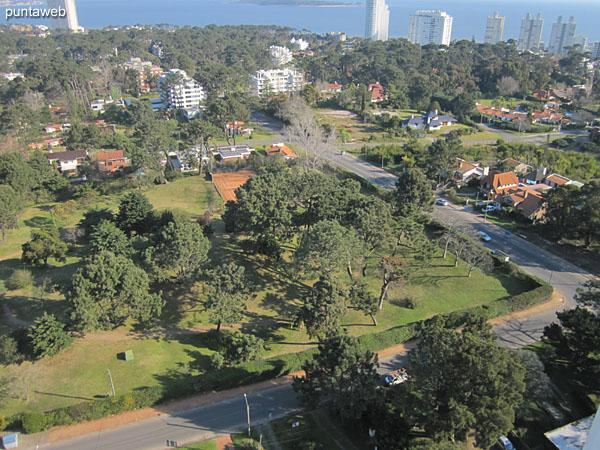 Vista hacia la bahía de Punta del Este desde la terraza del edificio.