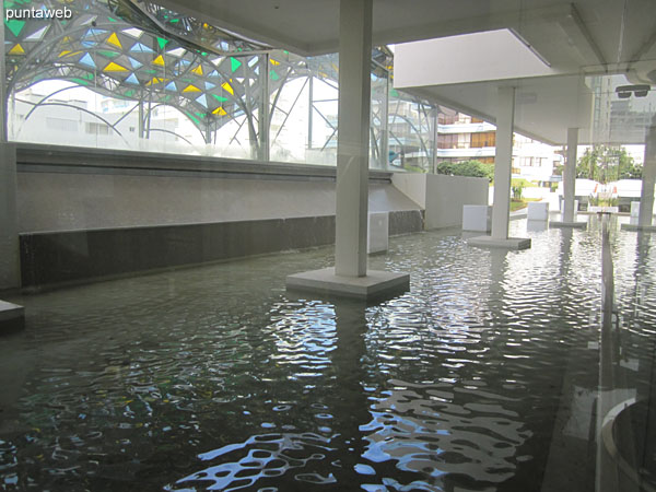 Reflecting pool between the heated pool and the lobby of the building.