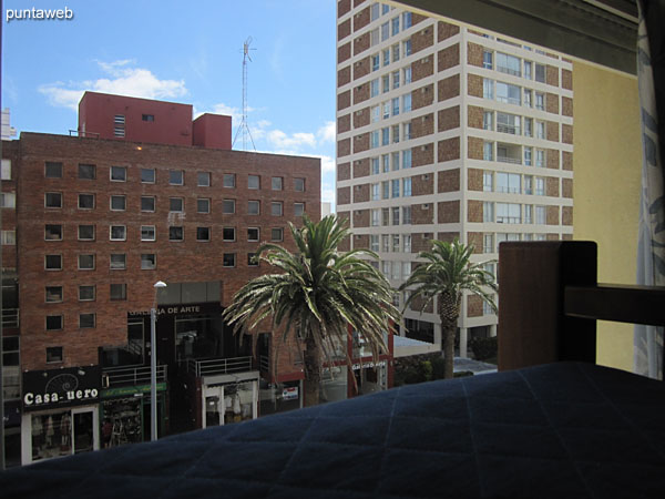 View towards 28th street from the window of the third bedroom.