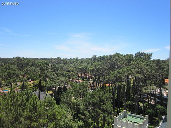 Vista desde el balc�n terraza hacia Punta Shopping y playa Mansa.