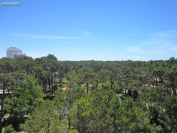 Vista hacia el noroeste sobre la Av. Roosevelt y entorno de barrios residenciales desde la ventana del segundo dormitorio.