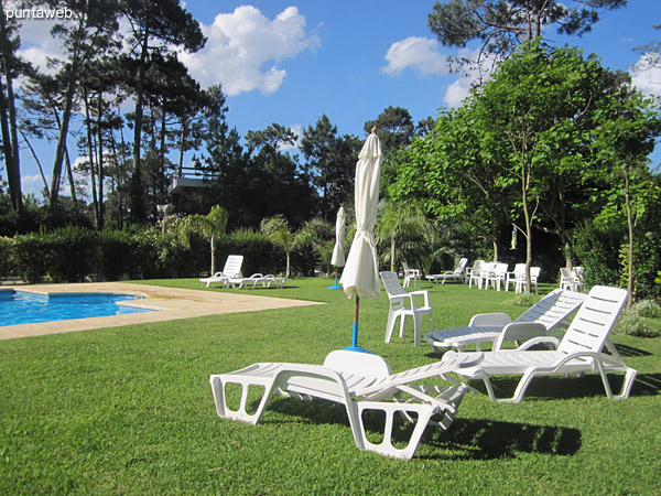 Entorno del jard�n junto a la piscina al aire libre.