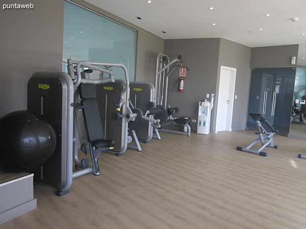 Sistema de pesas en el gimnasio.