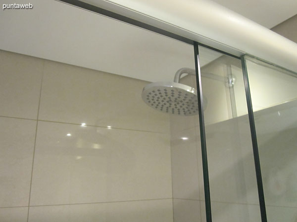 Detail of shower and screen in the bathroom of the master suite.