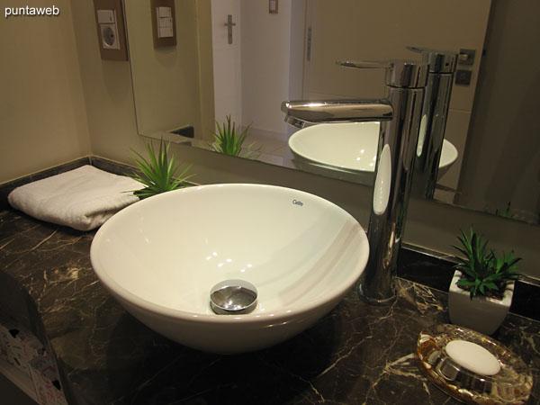 Detalle de la grifer�a y artefactos sanitarios en el toilette.