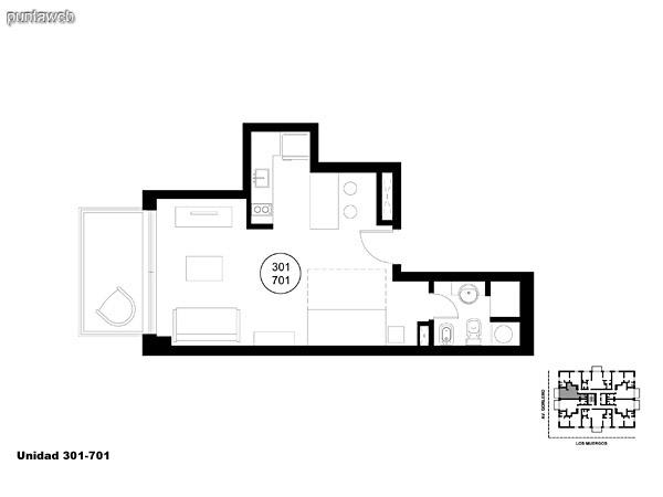 Unidad 301 y 701, monoambiente con acceso a terraza.