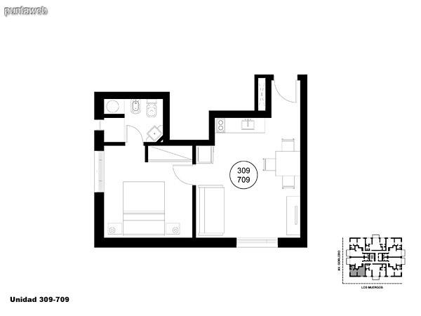 Unidad 309 y 709 unidad de un dormitorio sin acceso a terraza.