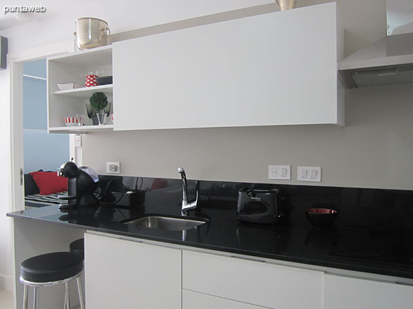 Cocina equipada con mesada y muebles sobre y bajo mesada. Cuenta con campana extractora.