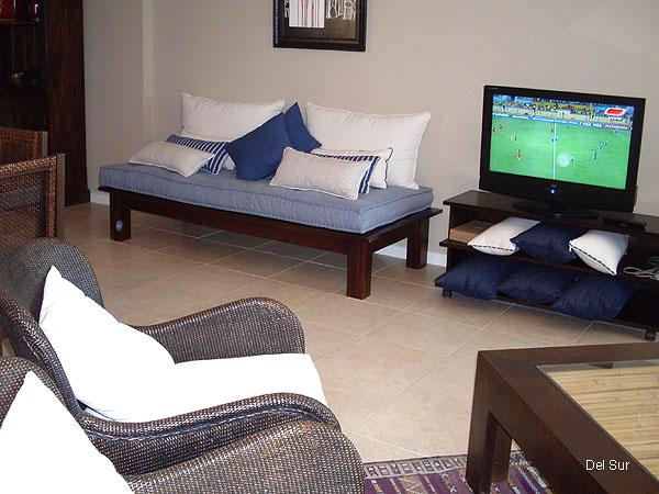 Televisor LCD y mobiliario del living.