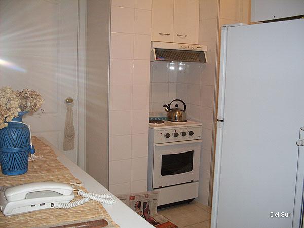 Cocina del apartamento tipo kitchenette, completa, nueva.