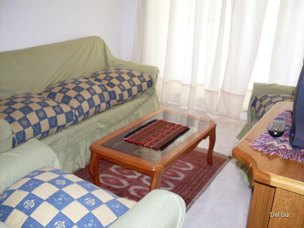 Ambiente del living, sofás, televisión.