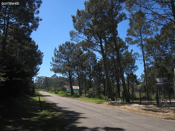 Natural environment in Burnett Park neighborhood.
