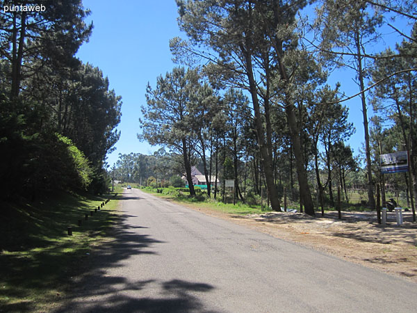 Entorno natural en el barrio Parque Burnett.