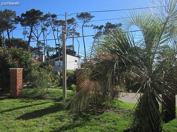 Vista hacia el jardín del frente de la casa desde la ventana del ambiente de estar.