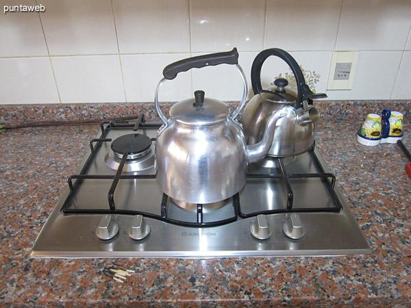 Detalle de disposición del equipamiento de la cocina: heladera, horno y microondas.