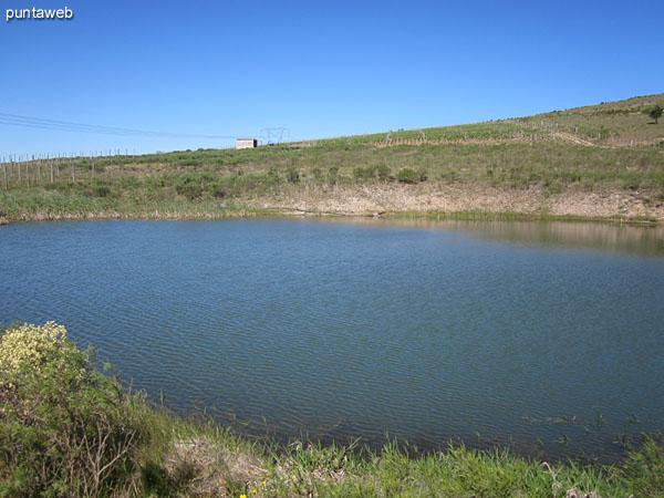 Vista de la aguada en su borde inferior junto al acceso al viñedo hacia el este.<br>